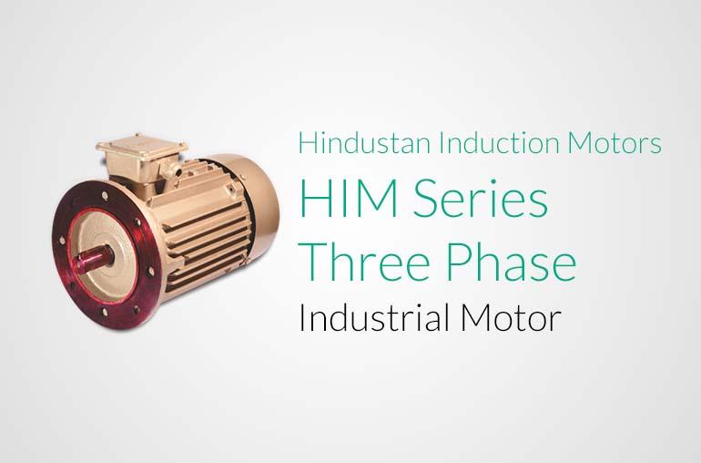 Hindustan Induction Motors