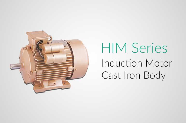 Hindustan Induction Motors Him Series Hindustan Pumps