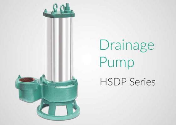 Hsv10 Pump With Ss 10 Motor Series Hindustan Pumps